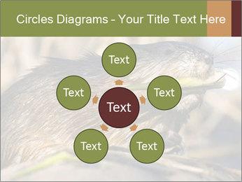 Green Spring PowerPoint Templates - Slide 78
