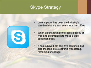 Green Spring PowerPoint Template - Slide 8