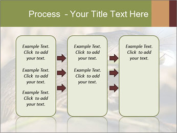 Green Spring PowerPoint Template - Slide 86