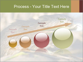 Green Spring PowerPoint Template - Slide 87