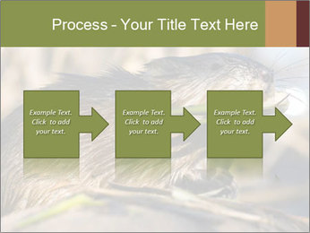 Green Spring PowerPoint Template - Slide 88