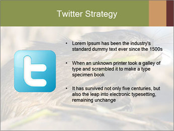 Green Spring PowerPoint Template - Slide 9