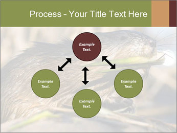 Green Spring PowerPoint Template - Slide 91
