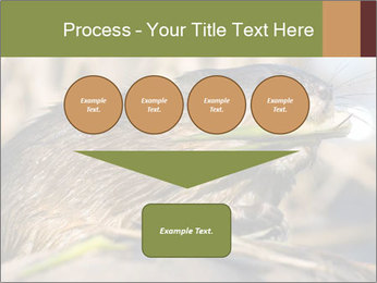 Green Spring PowerPoint Template - Slide 93