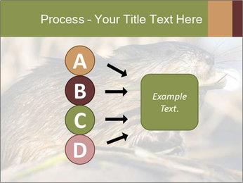 Green Spring PowerPoint Templates - Slide 94