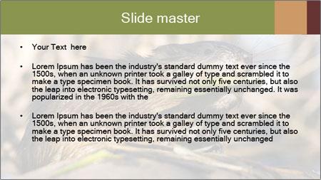 Green Spring PowerPoint Template - Slide 2