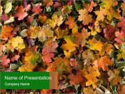 October Leaves PowerPoint Templates