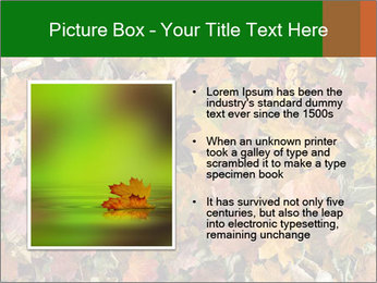 October Leaves PowerPoint Template - Slide 13