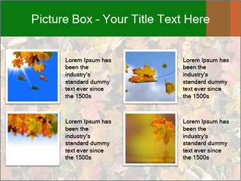 October Leaves PowerPoint Template - Slide 14