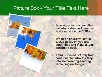 October Leaves PowerPoint Template - Slide 17