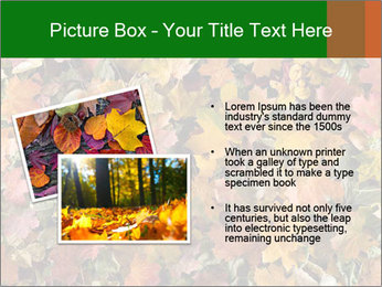 October Leaves PowerPoint Template - Slide 20