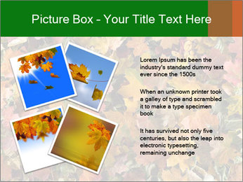 October Leaves PowerPoint Template - Slide 23