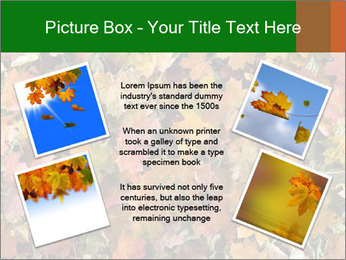 October Leaves PowerPoint Template - Slide 24