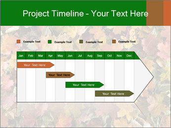 October Leaves PowerPoint Template - Slide 25