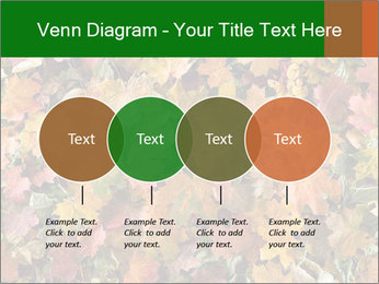 October Leaves PowerPoint Template - Slide 32