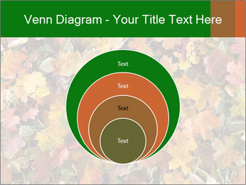 October Leaves PowerPoint Template - Slide 34