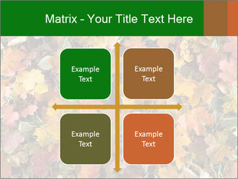 October Leaves PowerPoint Template - Slide 37