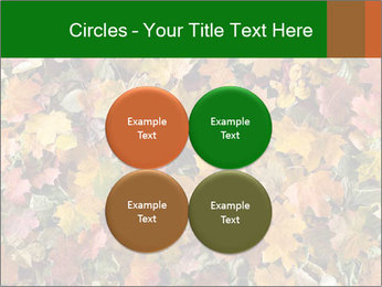 October Leaves PowerPoint Template - Slide 38