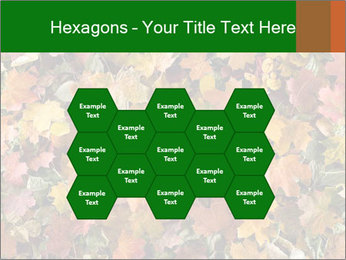 October Leaves PowerPoint Template - Slide 44