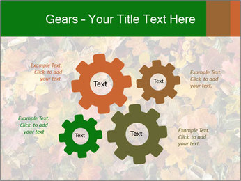 October Leaves PowerPoint Template - Slide 47
