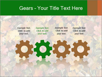 October Leaves PowerPoint Template - Slide 48