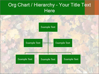 October Leaves PowerPoint Template - Slide 66