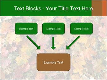 October Leaves PowerPoint Templates - Slide 70