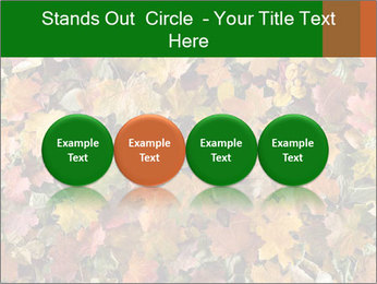 October Leaves PowerPoint Template - Slide 76