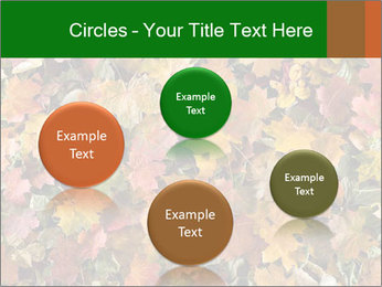 October Leaves PowerPoint Template - Slide 77