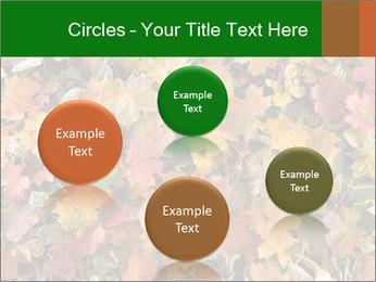 October Leaves PowerPoint Templates - Slide 77
