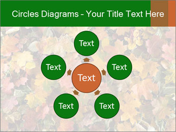 October Leaves PowerPoint Template - Slide 78