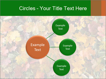 October Leaves PowerPoint Template - Slide 79
