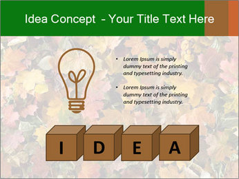 October Leaves PowerPoint Template - Slide 80