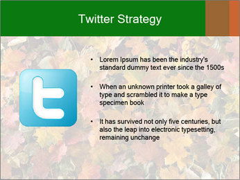October Leaves PowerPoint Template - Slide 9