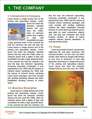 0000089221 Word Template - Page 3