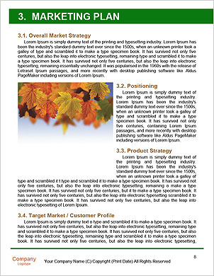 0000089221 Word Template - Page 8