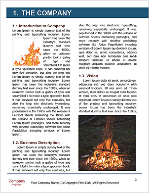 0000089223 Word Template - Page 3