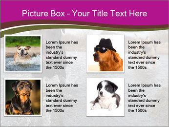 Three Running Dogs PowerPoint Template - Slide 14