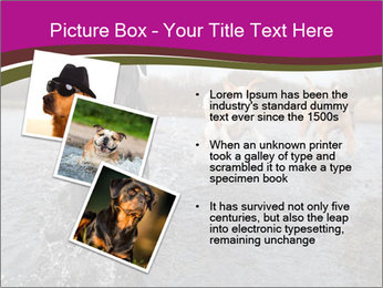 Three Running Dogs PowerPoint Template - Slide 17
