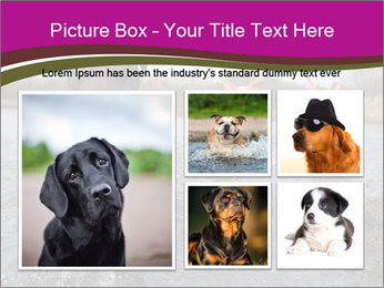 Three Running Dogs PowerPoint Template - Slide 19