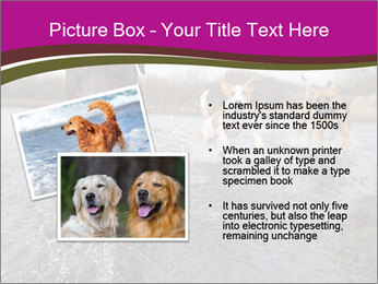 Three Running Dogs PowerPoint Template - Slide 20