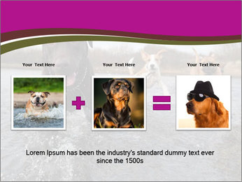 Three Running Dogs PowerPoint Template - Slide 22