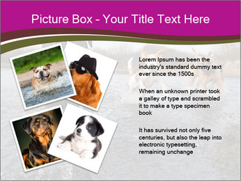 Three Running Dogs PowerPoint Template - Slide 23