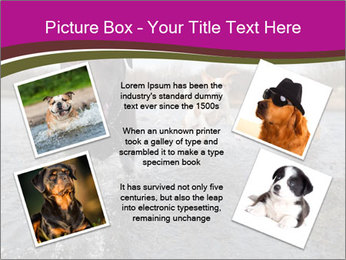 Three Running Dogs PowerPoint Template - Slide 24