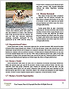 0000089232 Word Templates - Page 4
