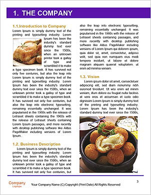 0000089234 Word Template - Page 3