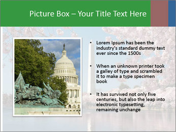 Spring In Japan PowerPoint Template - Slide 13