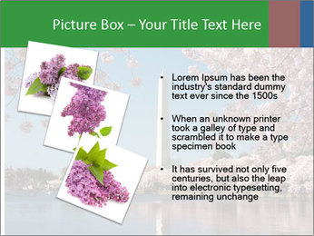 Spring In Japan PowerPoint Template - Slide 17