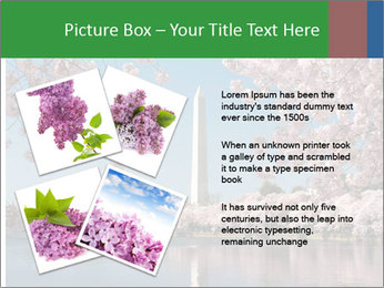 Spring In Japan PowerPoint Template - Slide 23