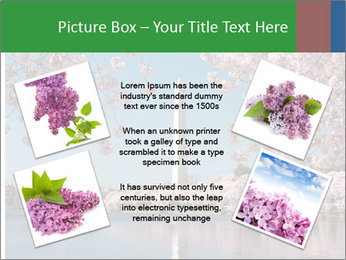 Spring In Japan PowerPoint Template - Slide 24